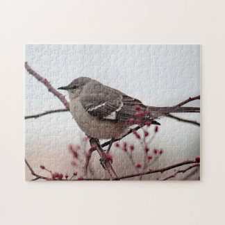 Northern mockingbird puzzle