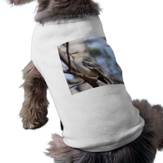 Northern Mockingbird Sleeveless Dog Shirt