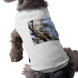 Northern Mockingbird Sleeveless Dog Shirt