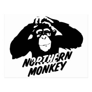 Northern Monkey Postcard