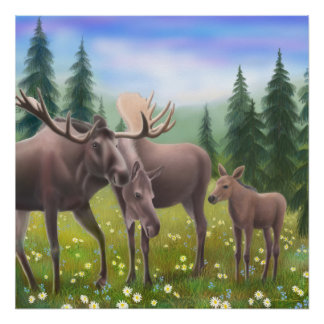Northern Moose Family Poster