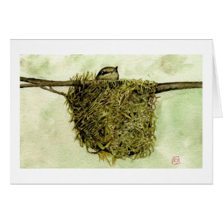 Northern Parula Nest Card