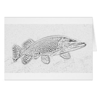 Northern pike cards