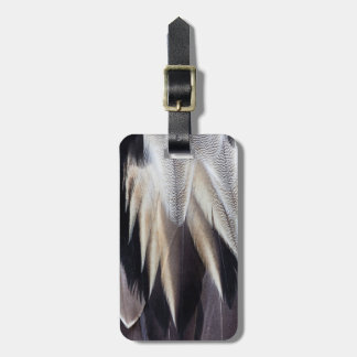 Northern Pintail Duck feather Luggage Tag