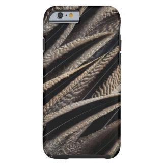 Northern Pintail Duck Feathers Tough iPhone 6 Case