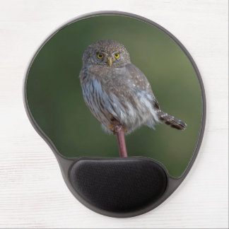 Northern Pygmy-owl Gel Mousepads