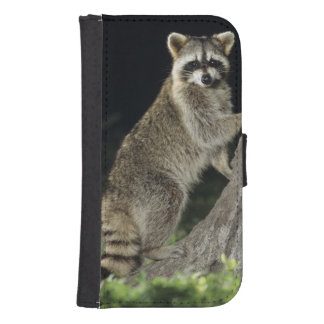 Northern Raccoon, Procyon lotor, adult at tree Samsung S4 Wallet Case