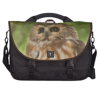 Northern Saw-whet Owl Bags For Laptop