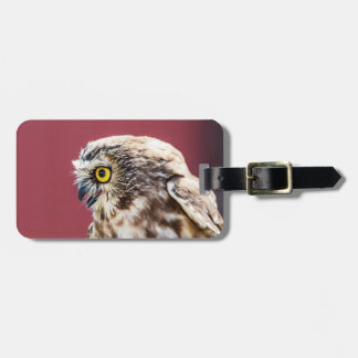 Northern Saw-Whet Owl Portrait Luggage Tag