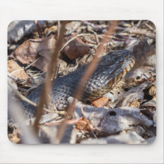 Northern Water Snake Mouse Pad
