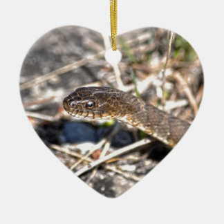 Northern Water Snake Reptile Wildlife Photo Ceramic Heart Decoration