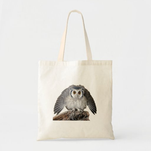 """""""Northern White-faced Owl"""" Canvas Bags"""