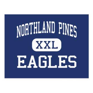 Northland Pines Eagles Middle Eagle River Postcard