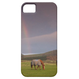 Northumberland, England Case For The iPhone 5