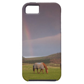 Northumberland, England iPhone 5 Case