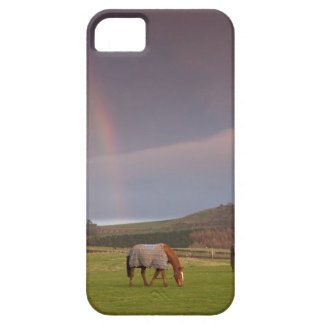 Northumberland, England iPhone 5 Cover