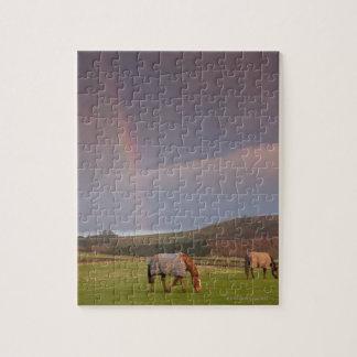 Northumberland, England Jigsaw Puzzle