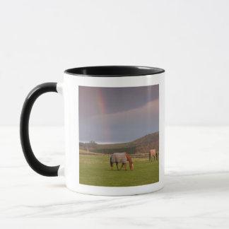 Northumberland, England Mug