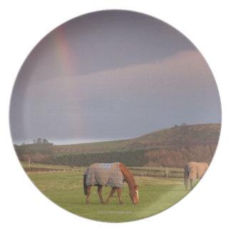 Northumberland, England Plate