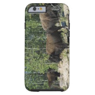 Northwest Territories. Wood Buffalo National Tough iPhone 6 Case