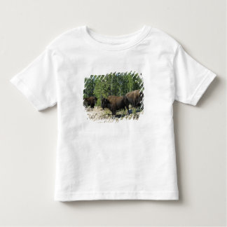 Northwest Territories. Wood Buffalo National Toddler T-Shirt