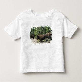 Northwest Territories. Wood Buffalo National Toddler T-Shirt
