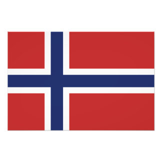 Norway Flag Photographic Print