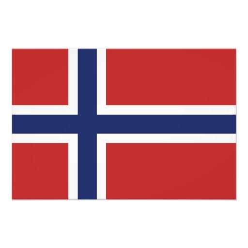 Norway Flag Photographic Print