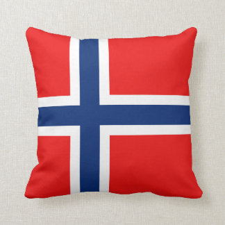 Norway Flag x Flag Pillow