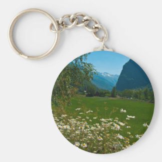 Norway spring flowers keychains