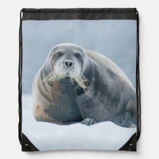 Norway, Svalbard Archipelago, Spitsbergen 4 Drawstring Bag