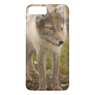 Norway, Svalbard Archipelago, Spitsbergen 6 iPhone 8 Plus/7 Plus Case