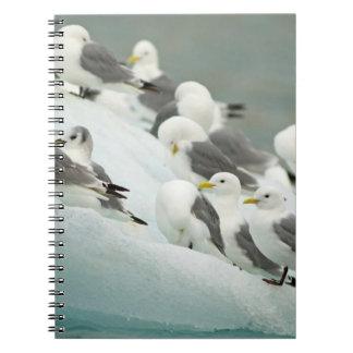 Norway, Svalbard Archipelago, Spitsbergen Spiral Note Book
