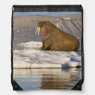 Norway, Svalbard, Edgeoya Island, Walrus Drawstring Bag