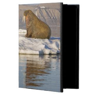 Norway, Svalbard, Edgeoya Island, Walrus iPad Air Case
