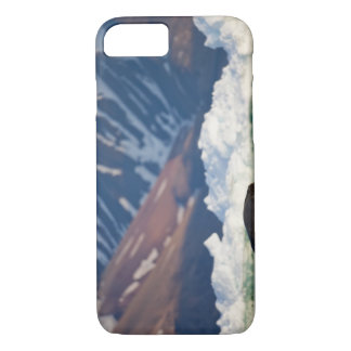 Norway, Svalbard, Spitsbergen Island, Bearded 2 iPhone 8/7 Case
