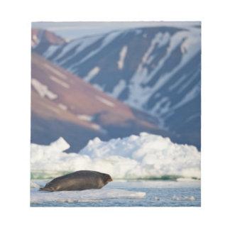 Norway, Svalbard, Spitsbergen Island, Bearded 2 Notepad