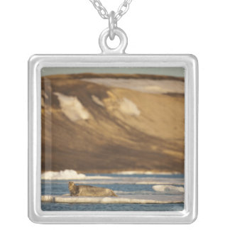 Norway, Svalbard, Spitsbergen Island, Bearded Silver Plated Necklace