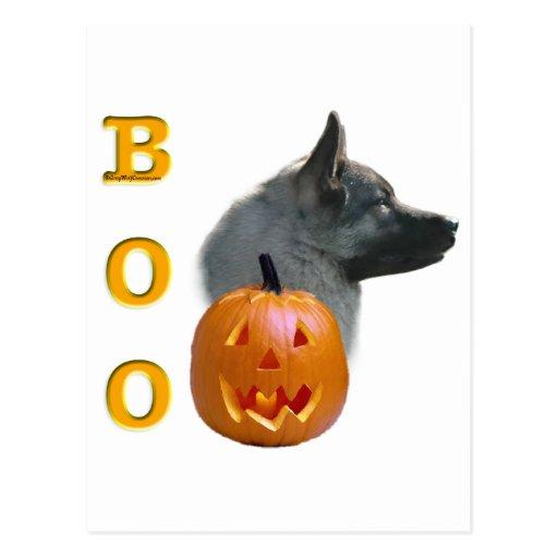 Norwegian Elkhound Boo Postcard
