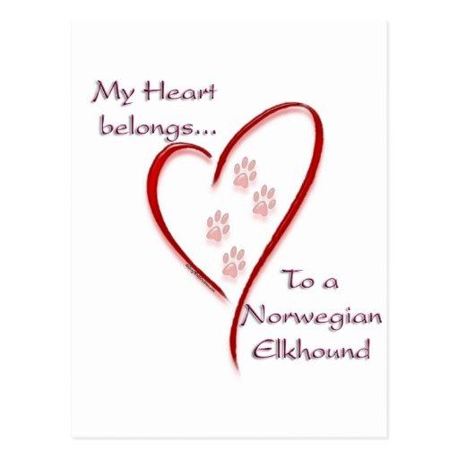 Norwegian Elkhound Heart Belongs Post Card