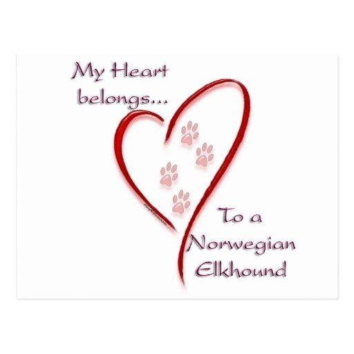 Norwegian Elkhound Heart Belongs Post Cards