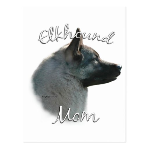 Norwegian Elkhound Mom 2 Postcard