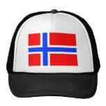 Norwegian Flag Cap