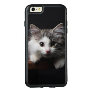 Norwegian Forest Kitten OtterBox iPhone 6/6s Plus Case