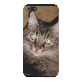 NORWEIGIAN FOREST CAT CASES FOR iPhone 5