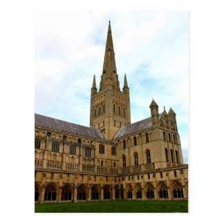 Norwich Cathedral Norfolk. Postcard