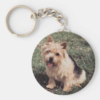 Norwich Terrier Keychain