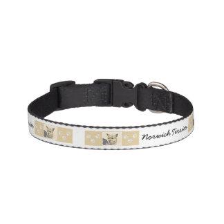 Norwich Terrier Pet Collar