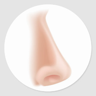 Nose body part illustration round sticker
