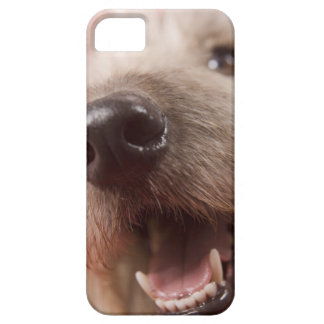 Nose of dog barely there iPhone 5 case